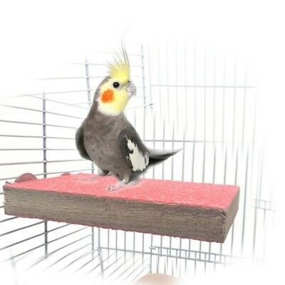 Pet Bird Paw Grinding Stand Platform Parrot Perches Cage Perch Branch Toys US