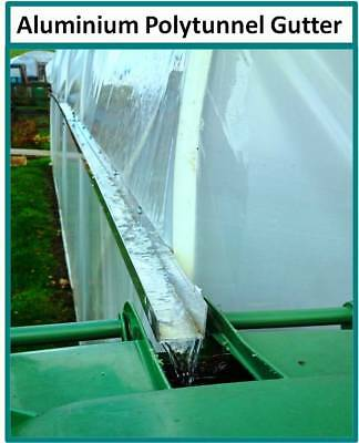 12FT WIDE POLY Tunnel Domestic Garden Polytunnels Plastic