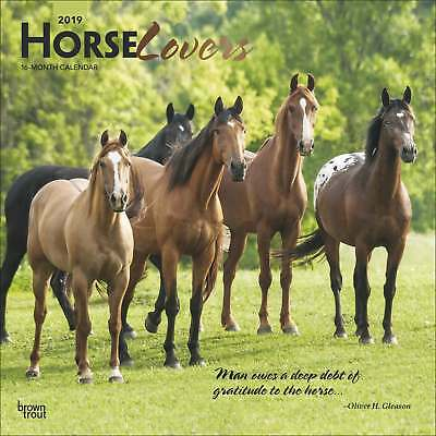 Horse Lovers Calendar 2019 Animals Month To View