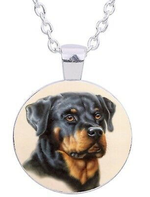 """Rottweiler Dog 20"""" Silver Tone Chain Glass Cabochon Pendant Necklace In Gift Box"""
