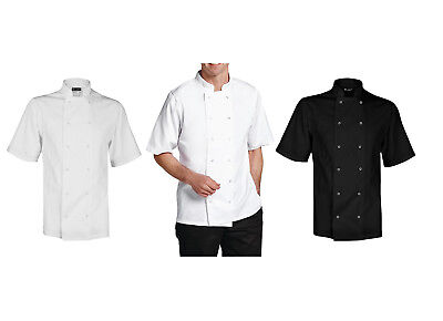 Whites Chefs Jacket Apparel Boston Unisex Short Sleeve Jacket White & Black Top