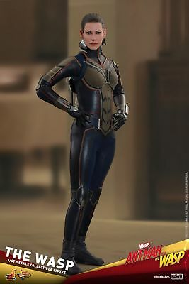 Hot Toys Ant-Man and the Wasp 1/6th scale The Wasp Collectible Figure MMS498