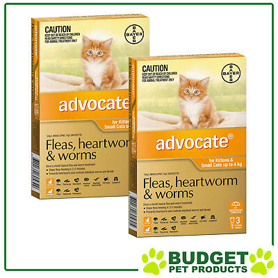Advocate For Cats And Kittens Small Up To 4kg 9 DOSES