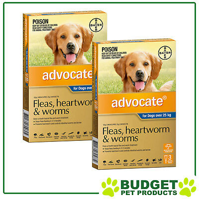 Advocate For Dogs XLarge Over 25kg 9 DOSES