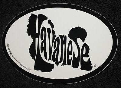 Havanese Oval Euro Style Car Dog Decal Sticker