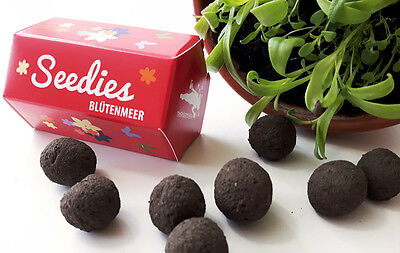 Mini-Seedballs Seedies, Sorte: Blütenmeer, ca. 15 Seedbombs pro Packung