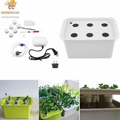6 Holes Plant Site Hydroponic System Grow Kit Bubble Indoor Cabinet Box GardenKF