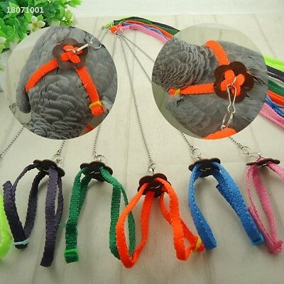 NEW Pet Parrot Bird Dog Harness Adjustable Traction Strap Training Rope B918
