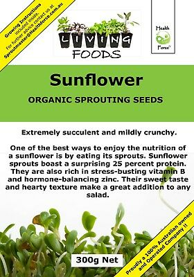 Sunflower Organic Sprouting Seeds