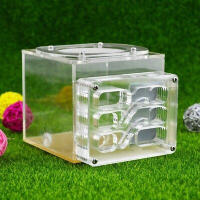 Acrylic Ant Nest Housing Ant Farm Formicarium For Ant Colony