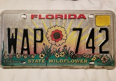 """Collectible Florida license plate """"State Wildflower"""" Coreopsis"""