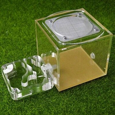 Mini Acrylic Ant Nest And Outworld Housing Ant Farm Formicarium Feeding Area