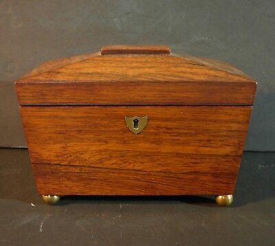 19th C Antique Rosewood Tea Caddy English with Brass Ball Feet