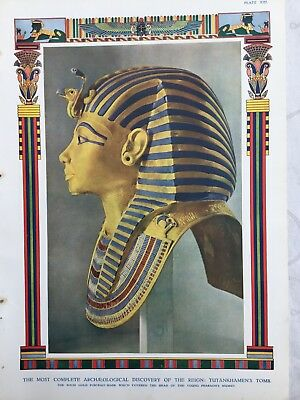 Colour plate of The Head of the Young Pharaoh's Mummy