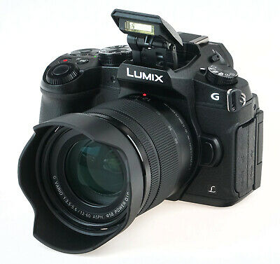 Panasonic LUMIX DMC-G85M Mirrorless Digital Camera w/ 12-60mm f/3.5-5.6 Lens