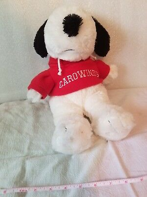 "Camp Snoopy Plush Carowinds with Hoodie 15"" Peanuts Summer Fun"