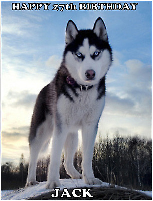 HUSKY DOG A4 PREMIUM Edible ICING Cake Topper CAN BE PERSONALISED SIBERIAN D2