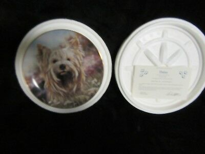 "Danbury Mint Collectors Plate ""Carry Me Home"" By Paul Doyle 8"""