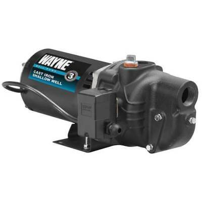 Wayne SWS100 1 HP Cast Iron Shallow Well Jet Pump For Wells Up To 25ft.