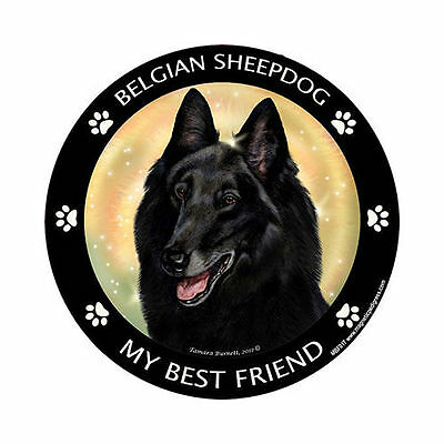 My Belgian Sheepdog Is My Best Friend Dog Car Magnet