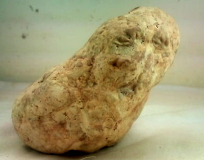 """""""Venus"""" from the Jordan Valley. From the lower Paleolithic period 2 MYA  RARE+++"""