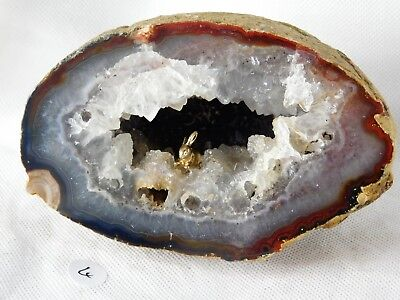 4) Large Bunny Rabbit Agate Crystal Geode - Great Gift Home Art Décor
