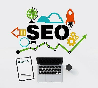 Search Engine Optimization SEO Professional Service from Trend IT