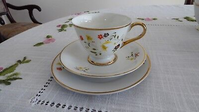 Japanese fine china tea set for 8 people Spring Flowers