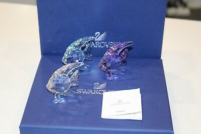 NEw - Swarovski Set of 3 Fish Crystal Decoration
