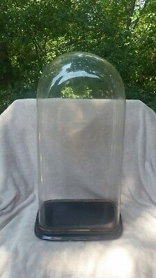 "Antique Victorian Glass Dome Case With Base - 24"" Tall - Free Shipping"