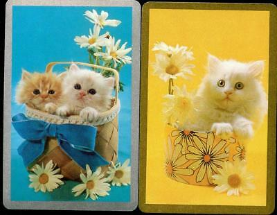Cat And Kitten Swap Cards X2 Pair In New Condition Blue And Yellow