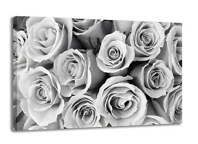 Black And White Rose  Flower Canvas Wall Art Picture  18 X 32 Inch (Framed)