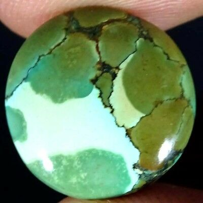 8.30Ct Attractive!! Tibet Turquoise Round Loose Cabochon Natural Gemstone