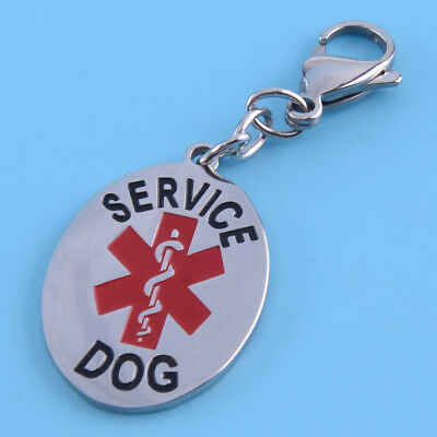 Stainless Steel Silver Medical Alert Service Dog ID Tag Keychain No Engraving