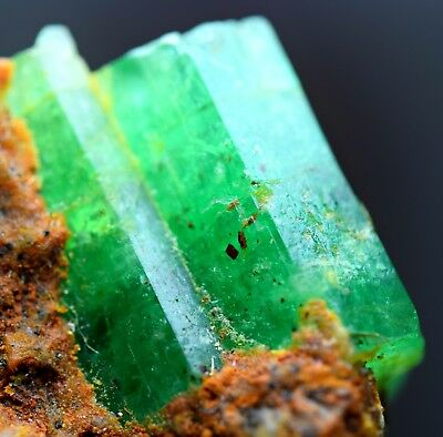 50CRT Full/well terminated top green lustrous huge Emerald crystals cluster @AFG