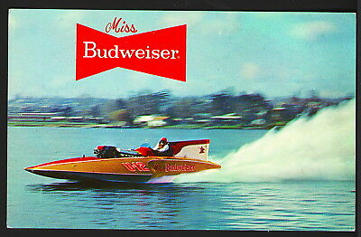 1966 Miss Budweiser Unlimited Hydroplane U-12 Chrome Postcard