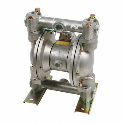 "Double Diaphragm Pump,1"" LIQUIDYNAMICS INC. 20013-Y"