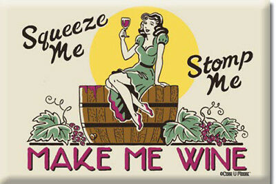 "Novelty 2""x3"" Metal Refrigerator Magnet - Make Me Wine"