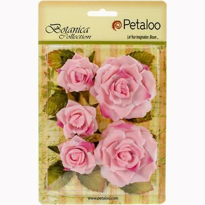 Petaloo Botanica Collection GARDEN ROSES ~ Soft Pink ~ 5 in packet