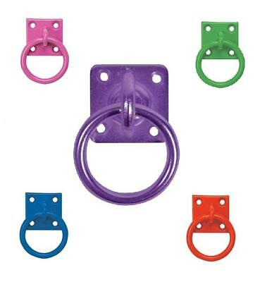 Tie Tether Ring on a Plate Horse Stable Yard Tack Room Equestrian Hay