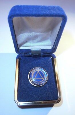INSURED BY SMITH AND WILSON sobriety Lapel Pin for Alcoholics Anonymous