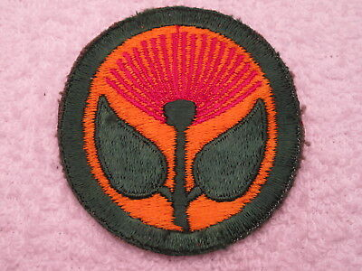 Ww Ii Us Army Hawaiian Coastal Defense Commnand Vintage Total Mint Patch !!