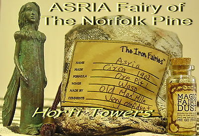 The Iron Fairies Fairy ASRIA (in Collectible RARE OLD STYLE BAG Packaging) +2Fre