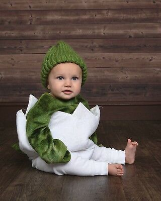 Pottery Barn Kids Baby Dinosaur Egg Halloween Costume, 6-12 Months No Hood