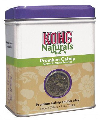 KONG Premium Catnip 1 oz Appeals to Cat Natural Instincts Ideal Toy 1oz