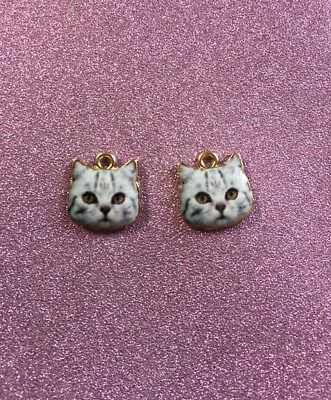 2 Very Cute Alloy Cat Face Charms Grey in colour