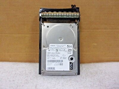 Hitachi Ultrastar Ultra320 Scsi 73Gb Rpm W/tray Caddy Ic35L073Ucdy10-0