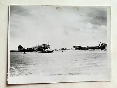 Wwii Photo  368Th Fighter Group P-47 Thunderbolts On Flight Line France