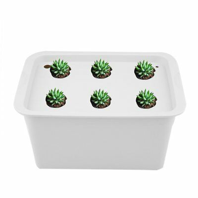 6 Holes Plant Site Hydroponic System Grow Kit Bubble Indoor Cabinet Box GardenML