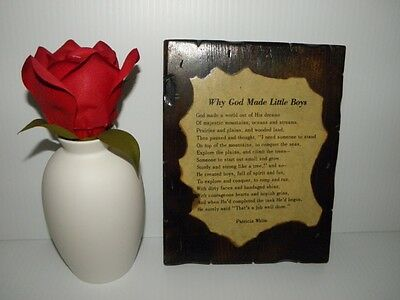 WHY GOD MADE LITTLE BOYS by Patricia White - VINTAGE WALL PLAQUE c.1970